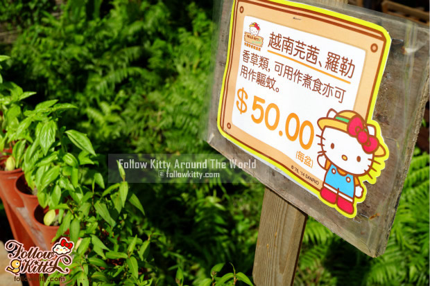 Products for selling in Hello Kitty Go Green Organic Farm