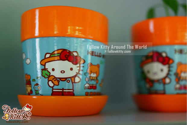 Hello Kitty獨家花盆