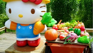 Hello Kitty Go Green Themed Farm Hong Kong Small